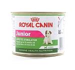 Royal Canin Mini Junior Can Food - 195 gm