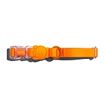 Zeedog Neopro Tangerine Dog Collar- Medium