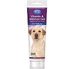 PetAg Vitamin & Mineral Gel for Dog - 141 gm