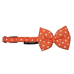 Mutt of Course Polka Salmon Dog Bow Tie- Small