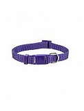 Trixie Cat Collar Premium - Violet