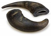 Pet en Care Horn Small - 1 Pc