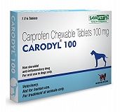 Savavet Carodyl - Carprofen 100 mg - 6 Tablets