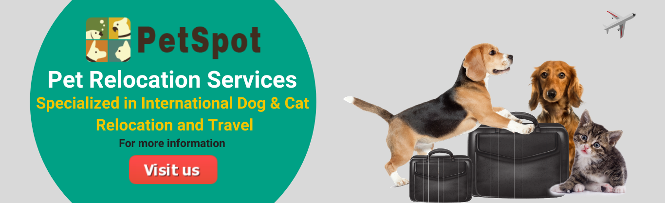 petspot Relocation