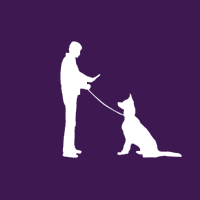 Guardian  dog trainer