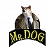 Mr. DOG Pet Shop 1