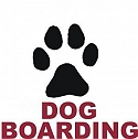 DOG LODGING & BOARDING  NAGPUR MAHARAST RA
