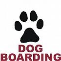 DOG LODGING & BOARDING  NAGPUR MAHARAST RA