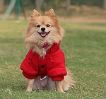 Touchdog Leisure Sport Style Hood Jacket - Large