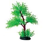 AQUA PLANTASY Plastic Plant Tree - A 102