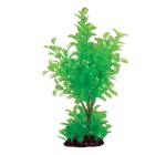 AQUA PLANTASY Plastic Plant Tree - C 306