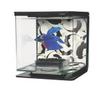 Marina Betta Kit Ying/Yang 2 Ltr