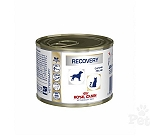 Royal Canin Veterinary Diet  Recovery Canned Food - 195 Gm