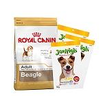 Royal Canin Beagle Adult - 3 Kg With Treats