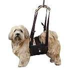 Inno Belly Sling For Dog - Large