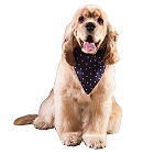 DogSpot Polka Dot Dog Bandana Blue - Small