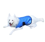Hydro Kyle Cooling Coat For Dog Blue - Large