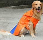 DogSpot Hooded Raincoat Orange Size -16