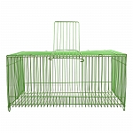 BirdSpot Bird Transport cage - (LxBxH- 11x7x5.5 Inches)