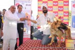 3rd All Breed Open Dog Show 2012 |