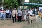 Baroda Dog Show 4th Nov 2012 | sw-64, lineup,sw-64,