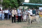 Baroda Dog Show 4th Nov 2012 | sw-64, ex-122,lineup,sw-64,