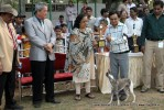 Baroda Dog Show 4th Nov 2012 | sw-64, ex-60,lineup,sw-64,