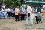 Baroda Dog Show 4th Nov 2012 | sw-64, ex-67,lineup,sw-64,