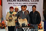 Delhi Kennel Club  | 6th best in show,ex-30,line up,sw-145,
