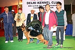 Delhi Kennel Club  | 2nd best in show,ex-320,line up,sw-145,