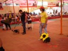 GILLY AT 165TH I.N.K.C SHOW IN KANDIVALI 28FEB 2010 |