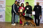Gurgaon Dog Show (2 Feb 2014) | lineup,,sw-113,ex-198