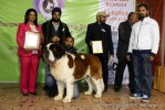 Gurgaon Dog Show (2 Feb 2014) | lineup,,sw-113,ex-160