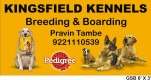 PET BOARDING & LODGING FOR DOGS |