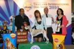 Thailand International Dog Show | lineup,wippet,
