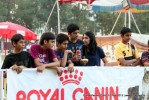 Vadodara Dog Show  | people,sw-83,