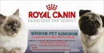 wisdom pet kingdom |