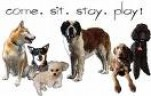 YOUR PETS CARE |