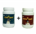 VitaSpot Multivitamin And CalSpot Calcium Supplement For Dog - 160 Tablets