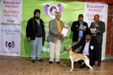 gurgaon-dog-show-2-feb-2014_365.jpg