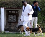 gurgaon-dog-show-2-feb-2014_95.jpg