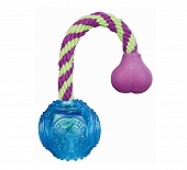 Trixie Ball on a Rope Dog Toy - Blue