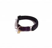 Urban Dog Berkley Martingale Collar - Black and Purple