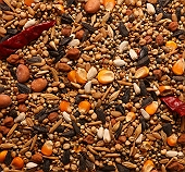 PetSpot Exotic Large Parrot Mix - 400 gm