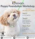 Beginners Puppy Foundation Workshop for New Pet Parents Happening on 19th Feb 2017- Register Now !!