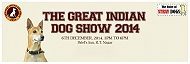 Come Together And Celebrate At The Great Indian Dog Show!!