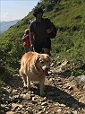 Here's To The Doggie Bow Wow Weekend at Nag Tibba Trek  & Tails on Trails