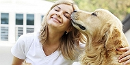 13 Dog Breeds that are Overwhelmingly Affectionate!