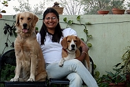 Dog Boarding and Grooming in Gurgaon, Delhi NCR by PetSpot