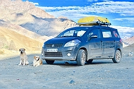 ''One Day While Figuring Out Life, I Got drunk & Promised Our 12 Year Old Labrador a Road Trip to Leh-Ladakh''